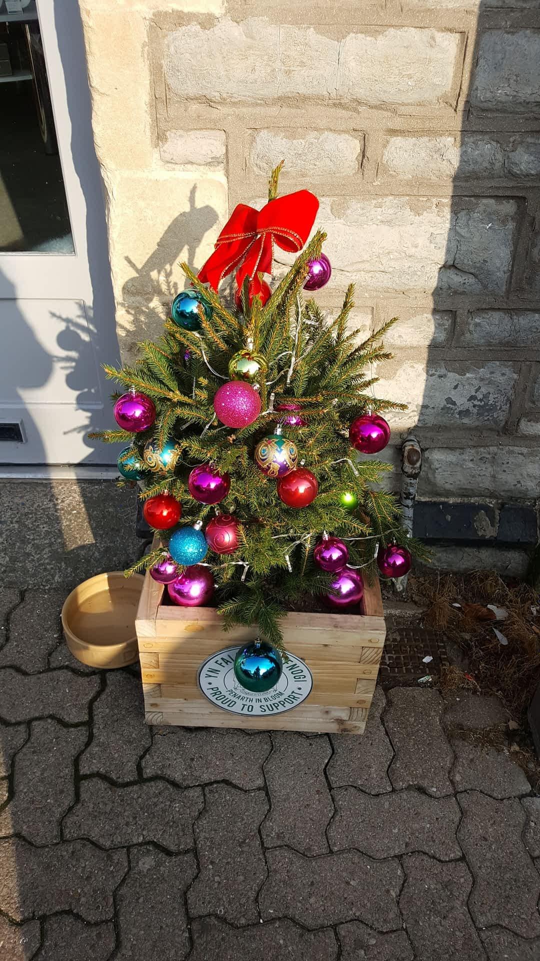 Christmas Tree Recycle Design.Christmas Tree Recycling Monday 14 January Friday 18 January 2019 Penarthtowncouncil Gov Uk
